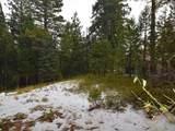 28909 Snowwhite Ridge Drive - Photo 6