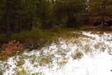28909 Snowwhite Ridge Drive - Photo 9