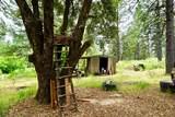 5160 Fair Pines Court - Photo 41