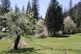 425 Lavezzola Road - Photo 39