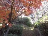 7231 Linda Vista Drive - Photo 24