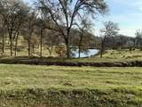 24525 Big Spring Drive - Photo 12