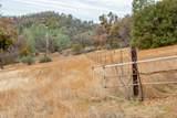 9955 State Highway 49 - Photo 1