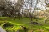 6235 Bella Vista Drive - Photo 51