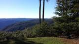 24090 Mosquito Ridge Road - Photo 5