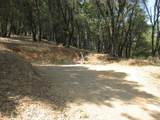 16110 Annie Drive - Photo 3