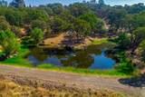 10565 Sierra Estates Drive - Photo 11