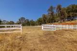 10565 Sierra Estates Drive - Photo 68