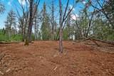 20295 Shake Ridge - Photo 19