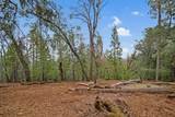 20295 Shake Ridge - Photo 22