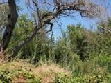 11330 Spud Island - Photo 7