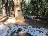 0 Grizzly Flat Road - Photo 2