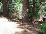 0 Grizzly Flat Road - Photo 8