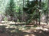 0 Grizzly Flat Road - Photo 9