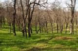 14645 Lone Oak Rd - Photo 8