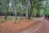 18642 Gold Creek Trail - Photo 1