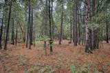 18642 Gold Creek Trail - Photo 10