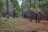 18642 Gold Creek Trail - Photo 12