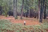 18642 Gold Creek Trail - Photo 3