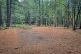 18642 Gold Creek Trail - Photo 4