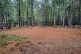 18642 Gold Creek Trail - Photo 6