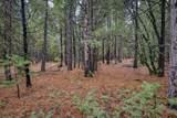 18642 Gold Creek Trail - Photo 9