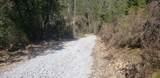 2 Moose Trail - Photo 2