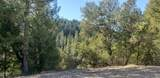 2 Moose Trail - Photo 4