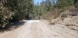 2 Moose Trail - Photo 8