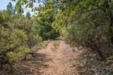 525 Deerborne - Photo 1