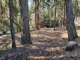 3280 Gold Ridge Trail - Photo 1
