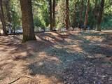 3280 Gold Ridge Trail - Photo 3
