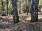 3280 Gold Ridge Trail - Photo 5