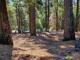 3280 Gold Ridge Trail - Photo 7