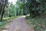 19724 Noatak Canyon Way - Photo 18