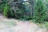 19724 Noatak Canyon Way - Photo 21
