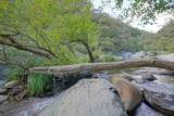 10380 Rock Creek Road - Photo 3