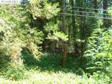 12633 Greenhorn Road - Photo 4