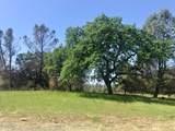 14760 Begonia Way - Photo 1