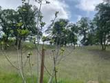 17265 Rancho Tehama Road - Photo 12