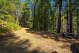 11424 Scotts Flat Dam Road - Photo 4
