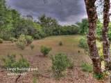 16015 Ridge View Circle - Photo 34