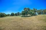 3463 Paseo Tranquilo - Photo 6
