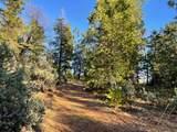0 Omo Ranch Road - Photo 5