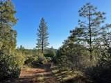 0 Omo Ranch Road - Photo 6