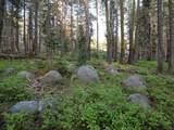 2 Bunny Hill Road - Photo 1