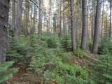 2 Bunny Hill Road - Photo 2