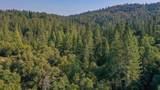 8005 Boondock Trail - Photo 25