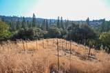 8005 Boondock Trail - Photo 61