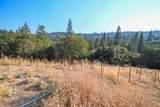 8005 Boondock Trail - Photo 62